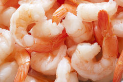 Shrimp. A close up on peeled jumbo shrimp Stock Photo