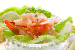 Shrimp cocktail Royalty Free Stock Photography
