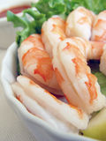 Shrimp Cocktail. Closeup of shrimp in a plate Stock Image