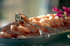 Free Shrimp Cocktail Royalty Free Stock Photos - 718888