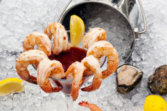 Shrimp Cocktail on Ice. Shrimp Cocktail with bucket of ice - dominant angle Royalty Free Stock Photo