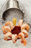Shrimp Cocktail on Ice - Vertical Stock Images