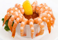Shrimp Cocktail Isolated on White Royalty Free Stock Photography
