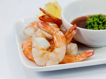 Shrimp Cocktail Isolated Stock Photography