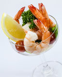 Shrimp Cocktail Isolated on a White . Royalty Free Stock Photography