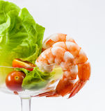 Shrimp Cocktail Isolated on a White . Royalty Free Stock Images