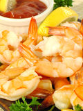 Shrimp Cocktail Platter Royalty Free Stock Photo