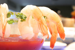 Shrimp coctail dinner Stock Image