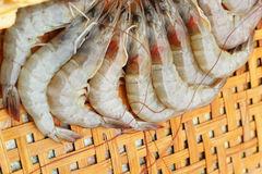 Shrimp - for cooking, place the basket. Royalty Free Stock Image