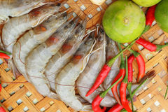 Shrimp - for cooking, place the basket. Stock Image
