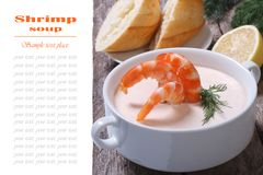 Shrimp in a creamy sauce isolated Stock Photo