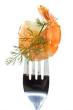 Shrimp with dill Stock Image