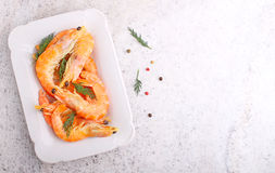 Shrimp and dill in white plate Royalty Free Stock Photos