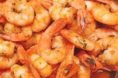 Shrimp dish with parsley and garlic Royalty Free Stock Images