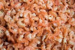 Shrimp. Dried salted prawn, sea food Royalty Free Stock Photos