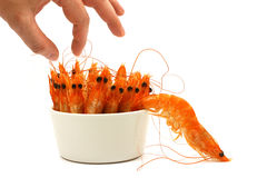 Shrimp escape Stock Photography