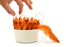 Shrimp escape Stock Photography