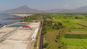 Shrimp farming in indonesia. Shrimp farm, prawn farming with with aerator pump oxygenation water near ocean. aerial view fish farm with ponds growing fish and stock video