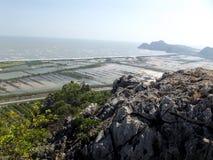 Shrimp farming ponds Stock Photography