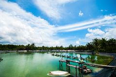 Shrimp farms. With blue sky and white clouds Royalty Free Stock Photo