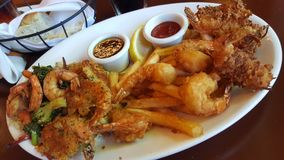 Shrimp feast dinner. With fried shrimp, coconut shrimp, herb crusted shrimp, and shrimp scampi with rice pilaf and french fries plus dipping sauces Royalty Free Stock Photography