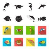 Shrimp, fish, hedgehog and other species.Sea animals set collection icons in black,flet style vector symbol stock. Illustration stock illustration