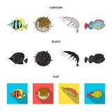 Shrimp, fish, hedgehog and other species.Sea animals set collection icons in cartoon,black,flat style vector symbol. Stock illustration vector illustration