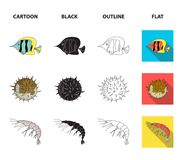 Shrimp, fish, hedgehog and other species.Sea animals set collection icons in cartoon,black,outline,flat style vector. Symbol stock illustration royalty free illustration