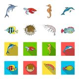 Shrimp, fish, hedgehog and other species.Sea animals set collection icons in cartoon,flat style vector symbol stock. Illustration vector illustration