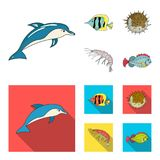 Shrimp, fish, hedgehog and other species.Sea animals set collection icons in cartoon,flat style vector symbol stock. Illustration stock illustration