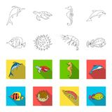 Shrimp, fish, hedgehog and other species.Sea animals set collection icons in outline,flet style vector symbol stock. Illustration royalty free illustration