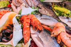 Shrimp, fish, mussels and lobsters on ice Royalty Free Stock Photo