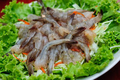 Shrimp in fish sauce,hot and spicy Royalty Free Stock Image