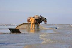 Free Shrimp Fishermen On Horseback, Oostduinkerke, Belgium Royalty Free Stock Photography - 42392937