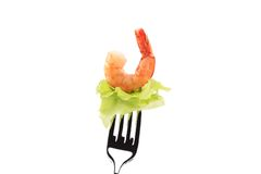Shrimp on fork. Stock Photography
