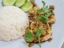 Shrimp fried with garlic and pepper , eat with rice Royalty Free Stock Photography