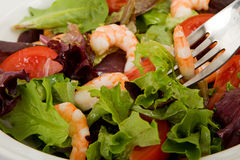 Shrimp Green Salad Stock Photography