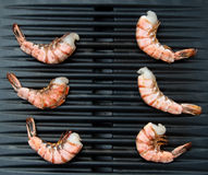 Shrimp On Grill Stock Images