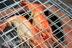 Shrimp on the grill Stock Images