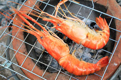 Shrimp on the grill Royalty Free Stock Photo