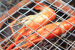Shrimp on the grill Royalty Free Stock Images