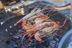 Shrimp grill Stock Image