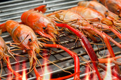 Shrimp grill Royalty Free Stock Images