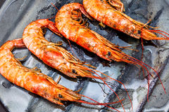 Free Shrimp Grilled Royalty Free Stock Images - 84840469