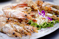Shrimp grilled. Fresh grilled shrimps on white plate Royalty Free Stock Photos