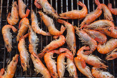 shrimp grilled Royalty Free Stock Images