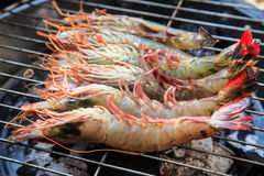 Shrimp grilling Stock Image