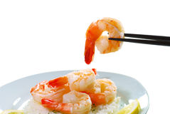 Shrimp held by chop sticks Royalty Free Stock Image