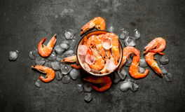 Shrimp with ice in a bowl . On a stone background Royalty Free Stock Images
