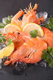 Shrimp and ice Royalty Free Stock Images